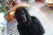 This is Mine. What's Yours? 2