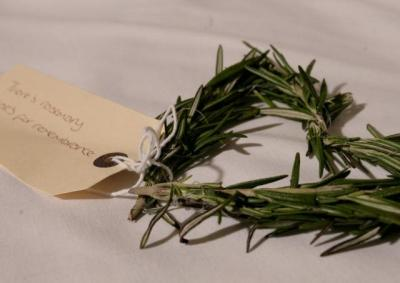 Photo: Matt Tullet